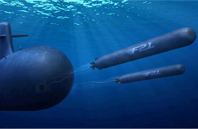 Torpedo model