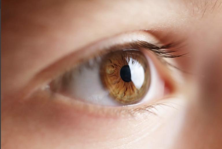 Korea's first artificial eye using 3D printing
