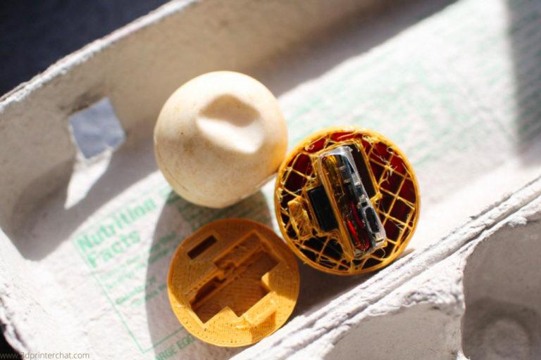 Scientists 3D print decoy sea turtle eggs to spy on poachers